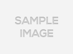 catalex micro sd thumb