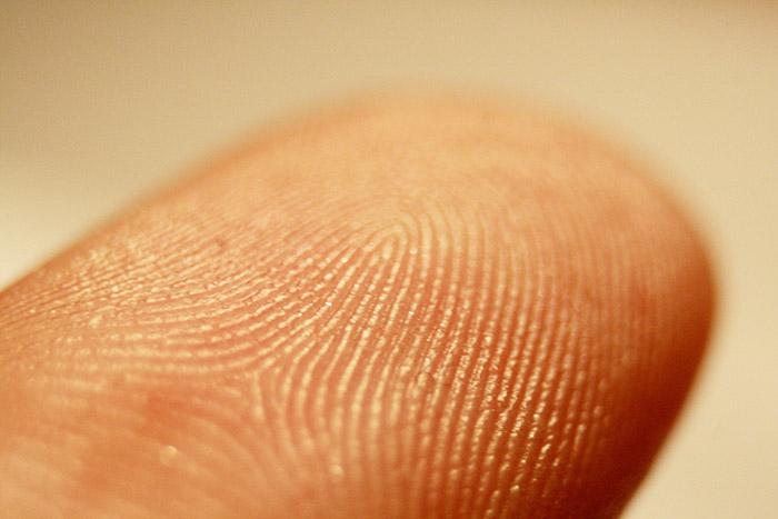 fingerprint wikipedia