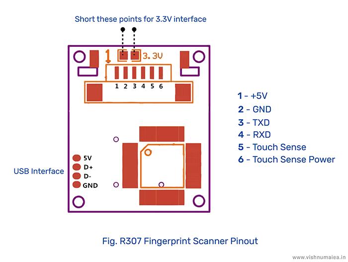 R307 Optical Fingerprint Scanner pinout